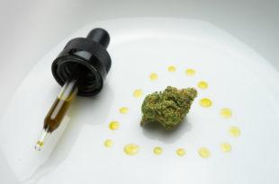 Cannabisolja